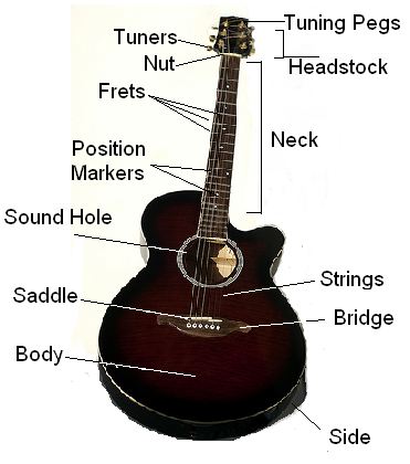 Anatomy of the Guitar, Part 2 + Purchasing a Guitar – Super Guitar Place